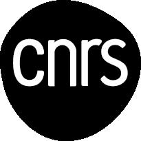 LOGO CNRS 2019_NOIR