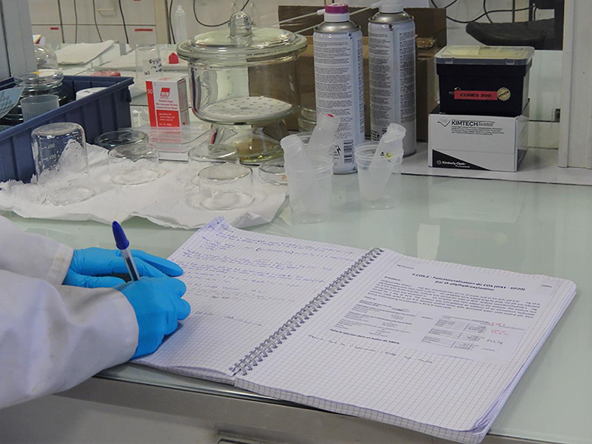 Laboratoire IMP (Ingénierie des Matériaux Polymères)