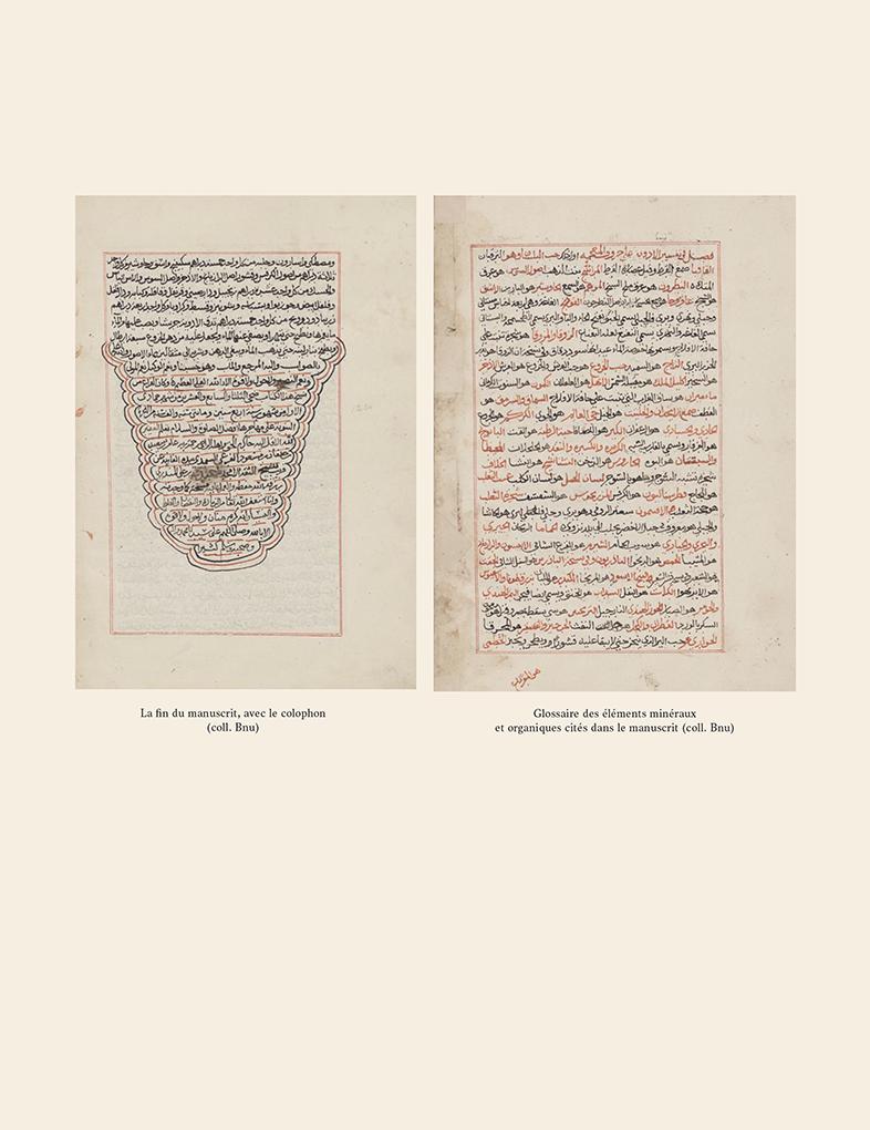 Fin du manuscrit - d'al-Ḥamawī, le Kitāb al-bayān fī kashf asrār al- ṭibb li-l-ṭiyān ou Le dévoilement des secrets de la médecine à tous